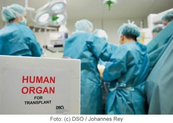 Symbolbild Organspende